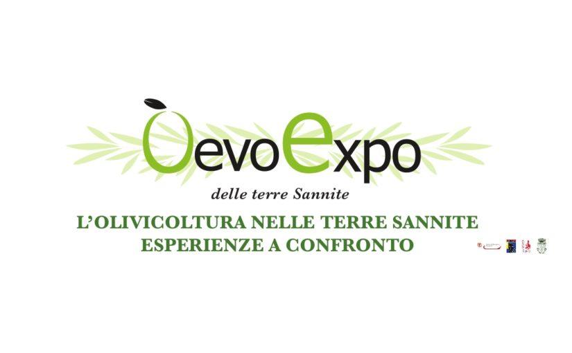 San Lorenzo Maggiore, 12 e 13 agosto: OEVO Expo – programma ed elenco espositori